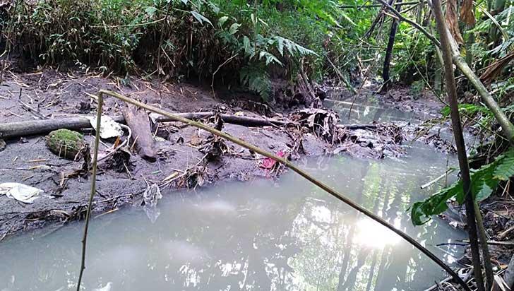 Quebradas del Quindío, convertidas en depósitos de desechos