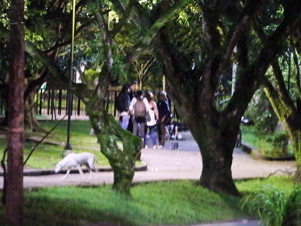 112 personas, sancionadas por incumplir el toque de queda
