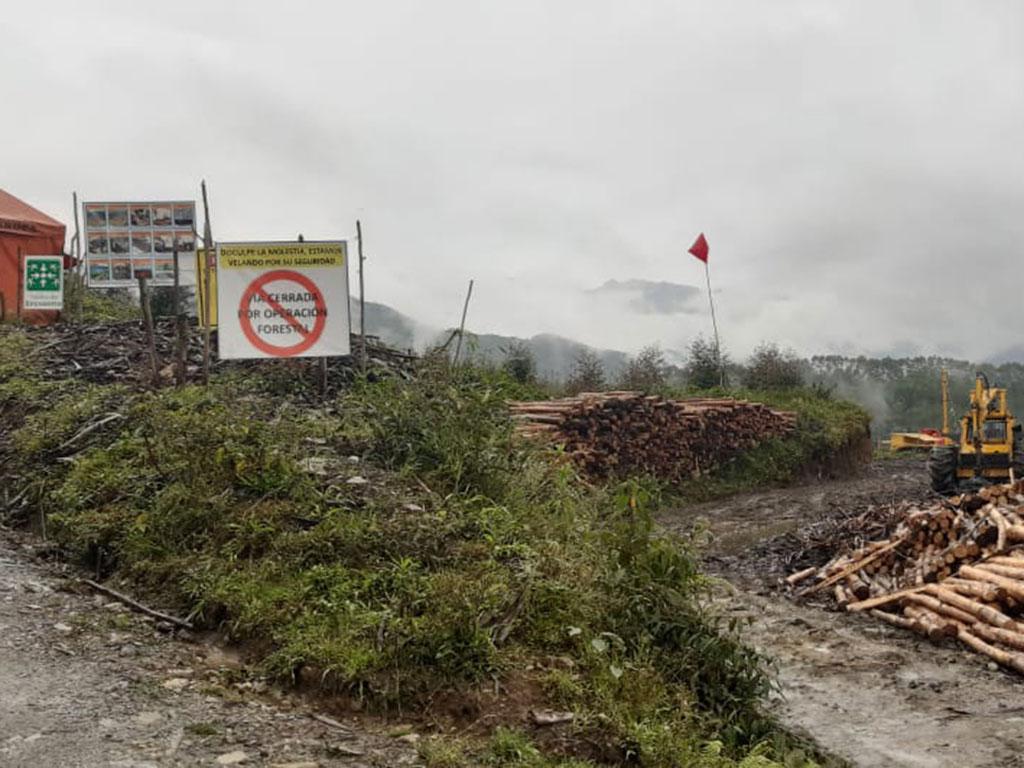 La ruta hacia 'La Patasola', pilas de madera que no circulan