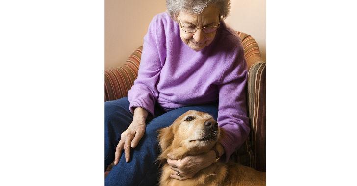 Mascotas ayudan a mejorar la salud de los adultos mayores