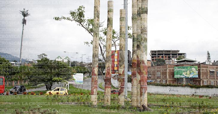 Denuncian erradicación de guadual bonsái en las Palmas