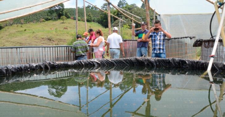 Uniquind o busca implementar nuevas estrategias para Estanques para piscicultura