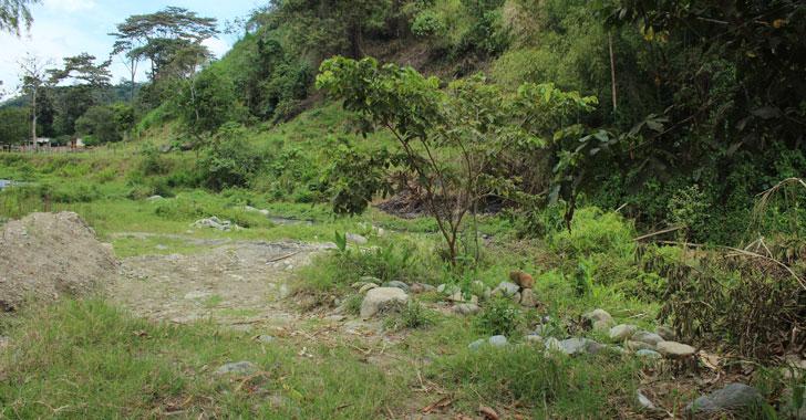 A Chinga lo encontraron muerto en Quebradanegra - La Cronica del Quindio