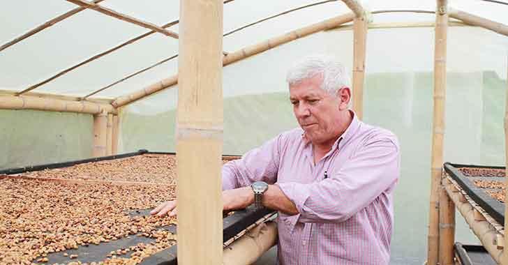 El Ocaso, una finca en el Quindío  donde la crisis del café es un asunto del pasado