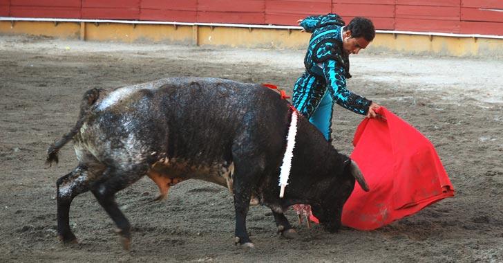 Este jueves Gobierno radicó proyecto de ley que busca eliminar corridas de toros