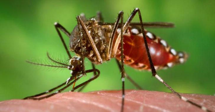Descubren anticuerpos que podrían ayudar a crear una vacuna contra el zika