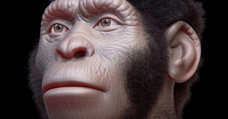El Homo naledi convivió con Homo sapiens hace 300.000 años en sur de África