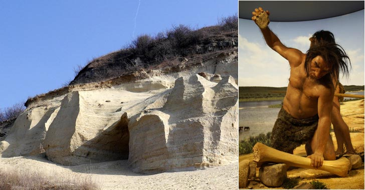 Los primeros 'Homo' habitaron zonas áridas y de pastizales, según un estudio