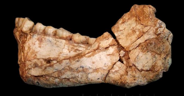 Restos del 'homo sapiens' más antiguo del mundo fueron hallados en Marruecos