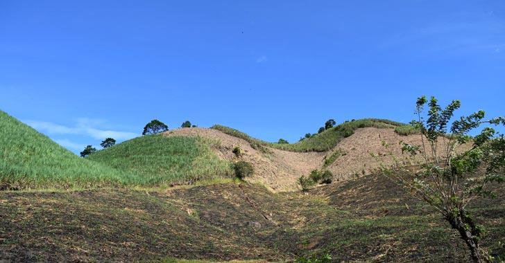 La deforestación en el país aumentó en un 44% en 2016, según estudio del Ideam