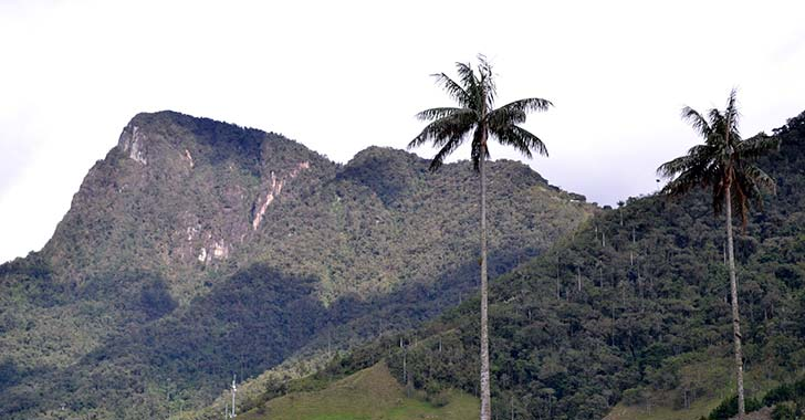 Morrogacho, un cerro tutelar de Salento, con historia arqueológica