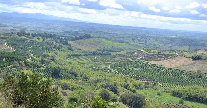Escombrera en Armenia no será en predio entre La Isabela y Arrayanes; analizan espacio propuesto en Pijao