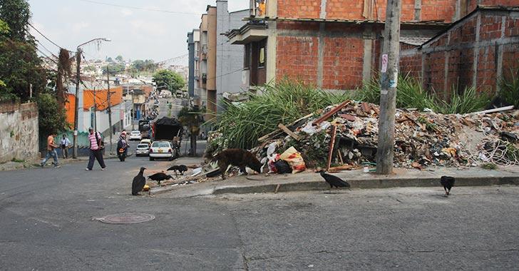 Lote en Armenia es usado como basurero