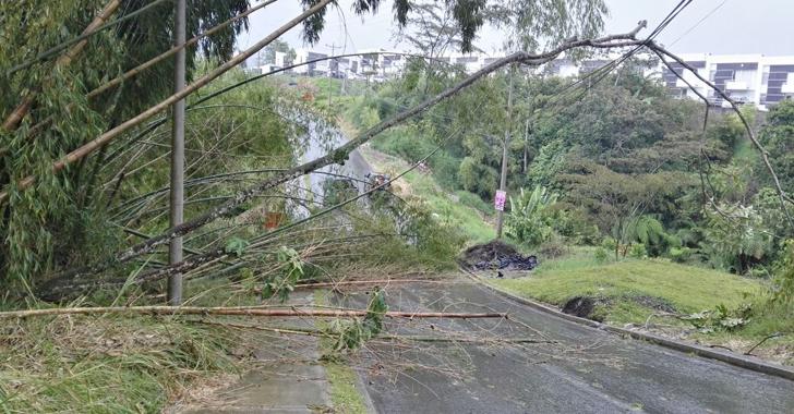 Edeq reporta afectaciones eléctricas en el Quindío a causa de fuertes lluvias
