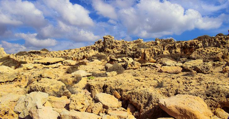 El 33% de suelo del mundo sufre erosión, alertó la FAO