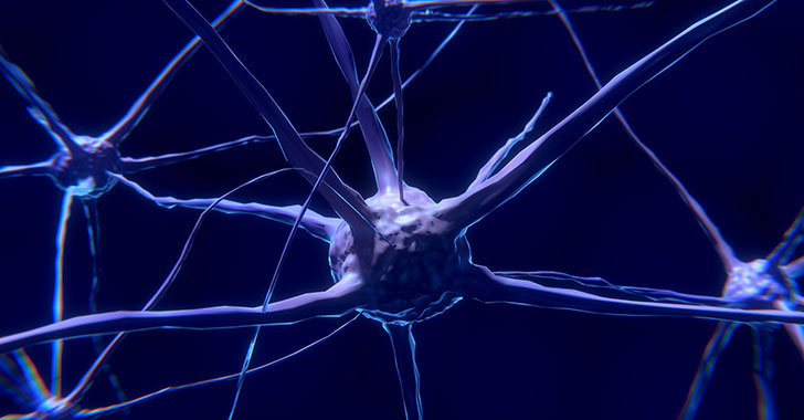 La neurociencia avanza en la investigación de relación de células cerebrales