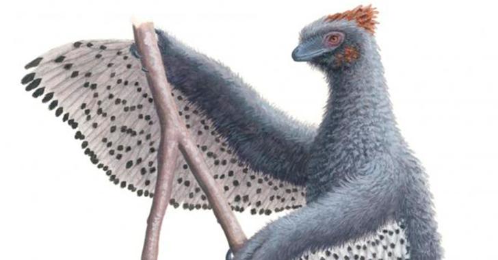 Los dinosaurios emplumados no eran como pensábamos