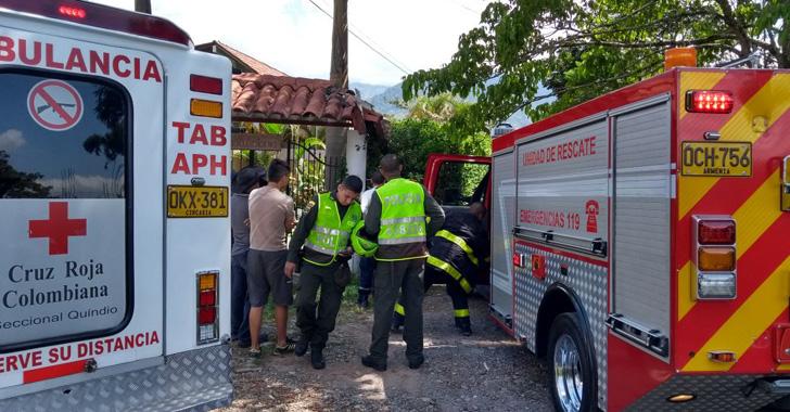 Ataque de abejas dejó tres personas lesionadas en Armenia