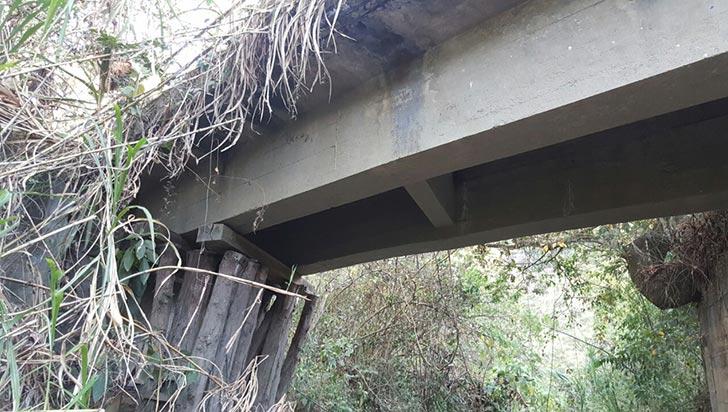 Comunidad alerta sobre mal estado de los puentes en Génova