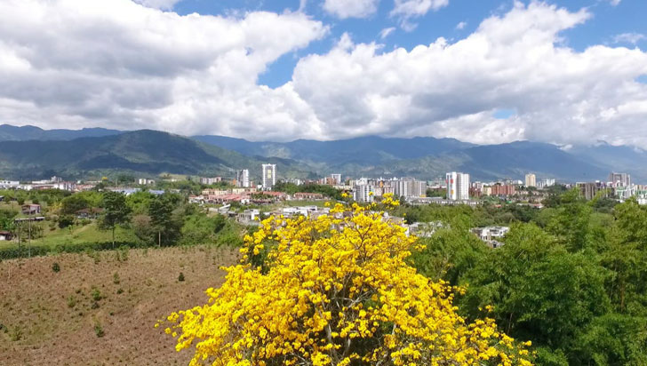 Camacol Armenia hizo llamado para superar situación que vive la ciudad