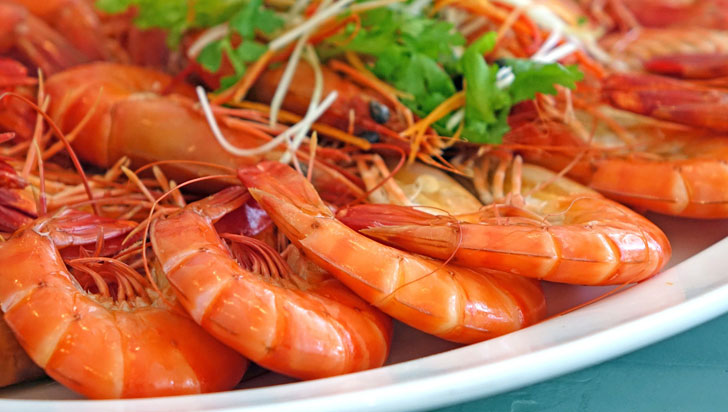 Las parejas que comen mariscos tienen más sexo y conciben más rápido