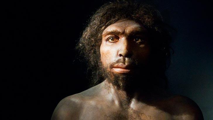 Confirman la antigüedad del Homo antecessor: entre 772.000 y 949.000 años