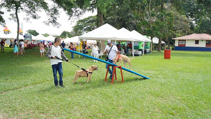 600 mascotas y sus dueños participaron de evento en Comfenalco