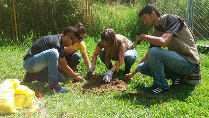 Siembra de árboles, en la  Semana de la Juventud