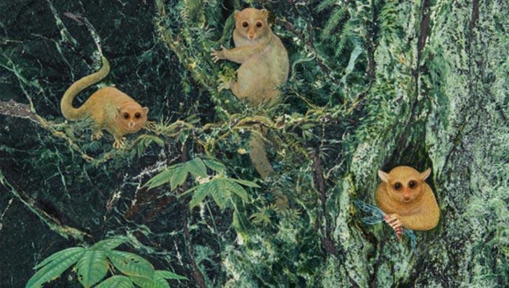 Tres primates extintos desconocidos para la ciencia, encontrados en California