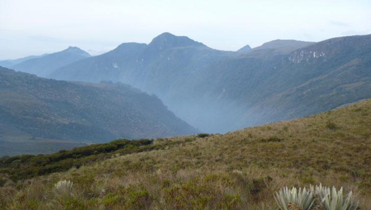 Aumento de turismo en parque Los Nevados podría afectar ecosistemas
