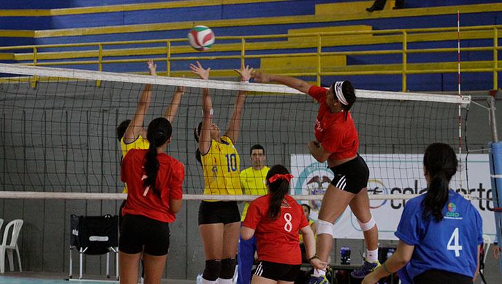 Comité proliga de voleibol invitó a clubes a afiliarse al órgano