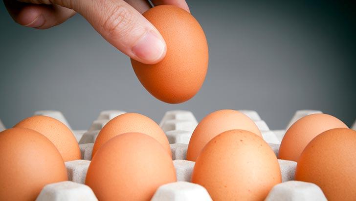 En Quindío se producen 150 millones de huevos al año