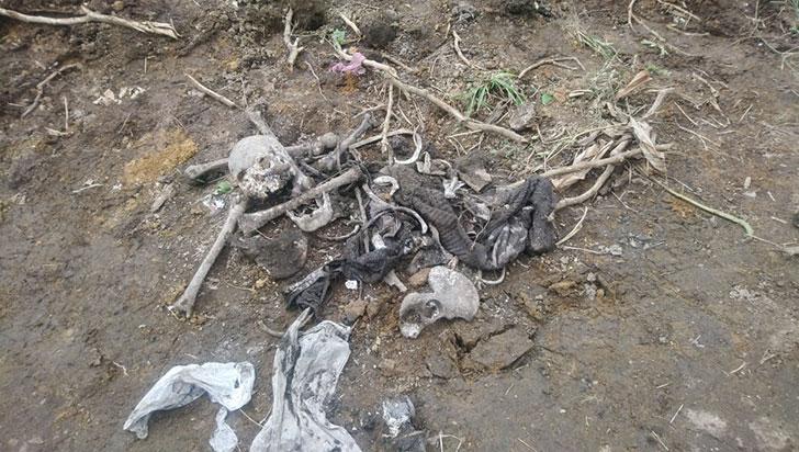 Restos óseos, hallados en zona rural de La Tebaida