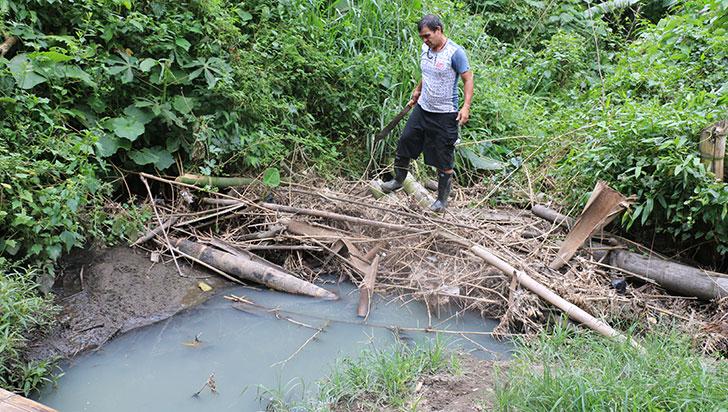 Aguas negras están contaminando cuatro nacimientos en la Nueva Fachada