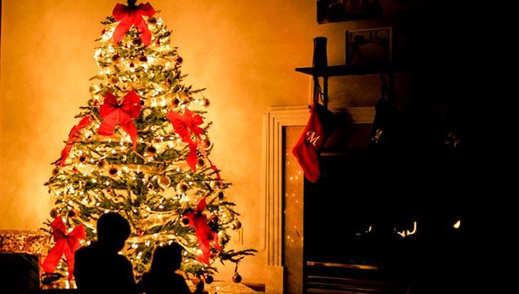 ¿Árbol de Navidad? Conozca dónde nace esta popular costumbre
