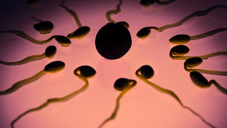 Los hombres también tendrían parte de responsabilidad en los abortos espontáneos