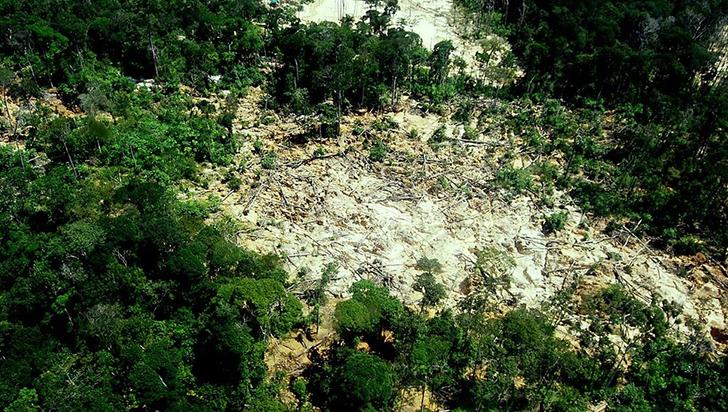 Bolsonaro y Maduro son un peligro para la Amazonía, destaca reporte ambientalista