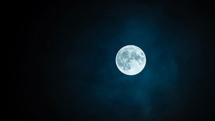 China logra que semilla de algodón brote en la Luna por primera vez