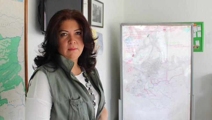MOE denunció agresiones contra 30 líderes políticos y servidores públicos en tres meses
