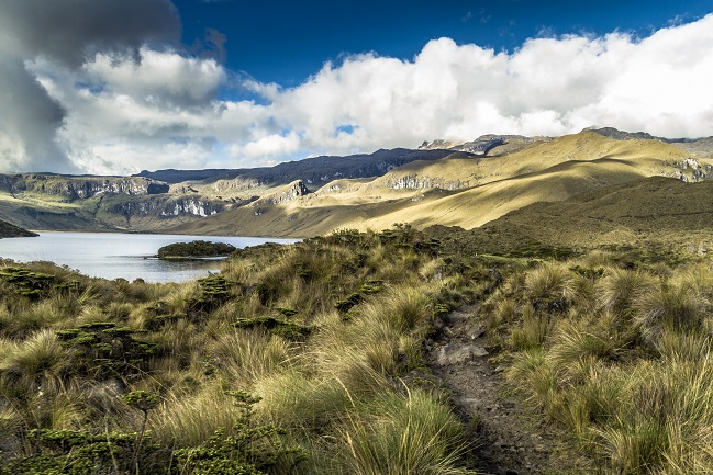 Número de visitantes en parques nacionales del país aumentó en 10,8%