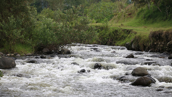 Convocatoria para 'Cuidadores de agua'