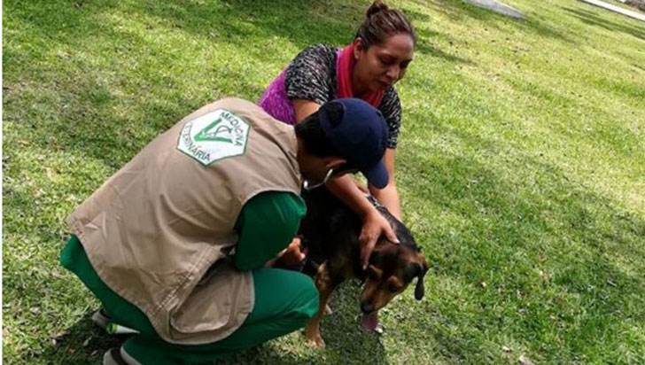 Jornada de salud veterinaria gratis