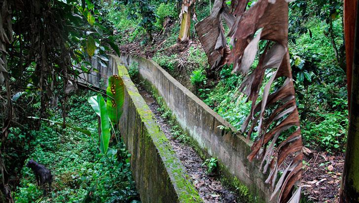Hidroeléctrica de Pijao, ¿cuál es la realidad del proyecto?