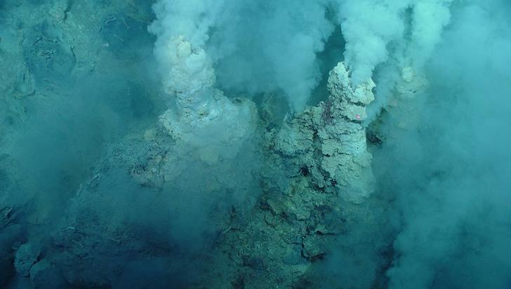 El mayor hábitat natural de bacterias de la Tierra se encuentra en la Fosa de las Marianas