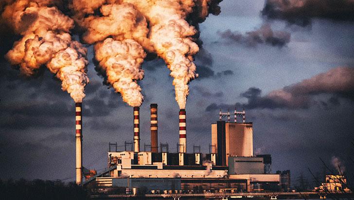 La contaminación puede afectar la fertilidad y la sexualidad de futuras generaciones