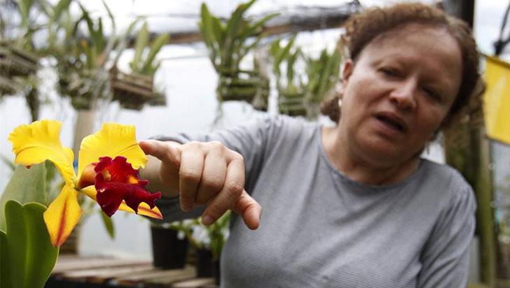 Antioqueña convierte su finca en un paraíso para la conservación de orquídeas