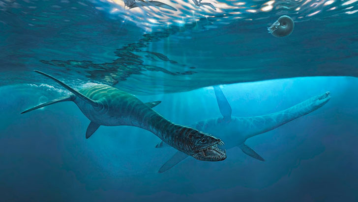 Reptil gigante hallado en la Antártida vivió poco antes de la gran extinción