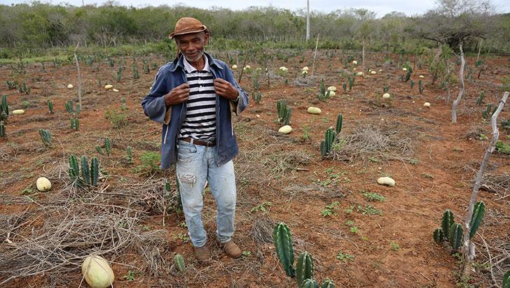La desertificación y la sequía, otros flagelos