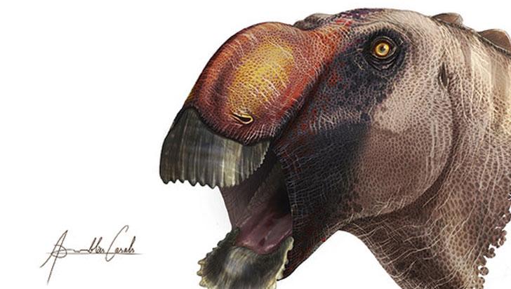 Identifican una extraña nueva especie de dinosaurio 'pico de pato'