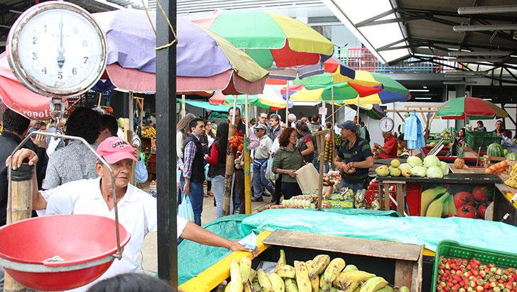"""""""163 locales arrendados en Centro Comercial del Café no están utilizados"""": gerente de Edua"""